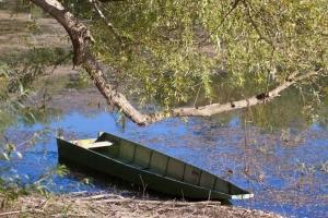 1 čoln vrbinsko tihožitje IMG_2811 (Copy)